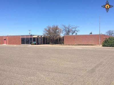 Curry County Commercial For Sale: 912 W 21st