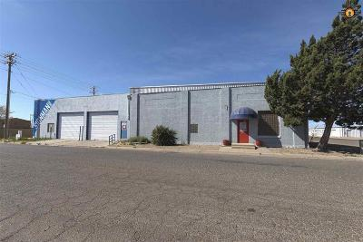 Portales Commercial For Sale: 123 N Ave C