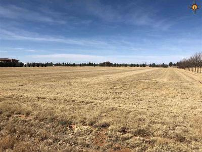 Curry County Residential Lots & Land For Sale: 4920 Humphry
