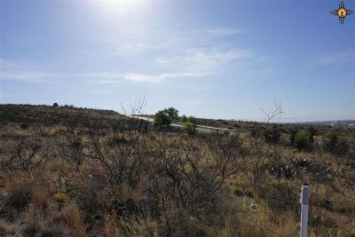 Residential Lots & Land For Sale: Lot 8 Miehls Dr
