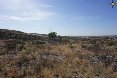 Residential Lots & Land For Sale: Lot 9 Miehls Dr