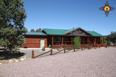 Catron County Single Family Home For Sale: 173 Apache Pass