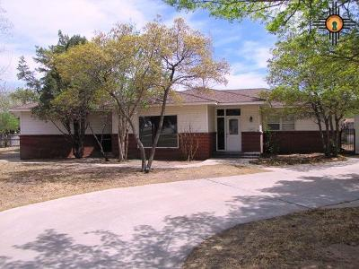 Hobbs Single Family Home For Sale: 501 E Yucca Dr.