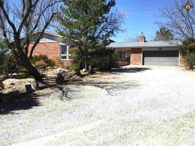Gallup Single Family Home For Sale: 393 B Hassler Valley Rd.