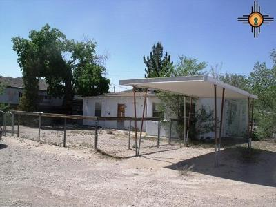 Sierra County Single Family Home For Sale: 613 S Broadway