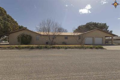Portales Single Family Home For Sale: 416 E 18th