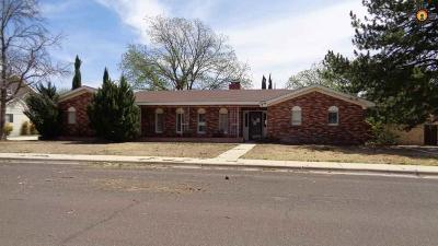 Hobbs Single Family Home For Sale: 1834 N McKinley St.
