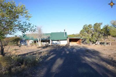 Catron County Single Family Home For Sale: 691 Hwy 36