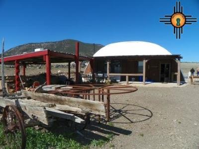 Catron County Single Family Home For Sale: 7463 Bursum Rd.