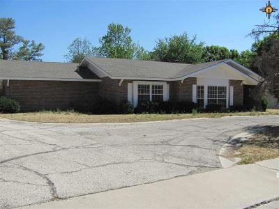 Hobbs Single Family Home For Sale: 509 E Alto Dr.