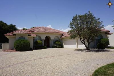Carlsbad Single Family Home Active, U/C-Take Back Ups: 1427 Desert Willow Dr