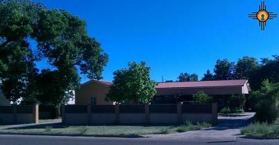 Las Vegas Single Family Home For Sale: 2429 Hot Springs Blvd.