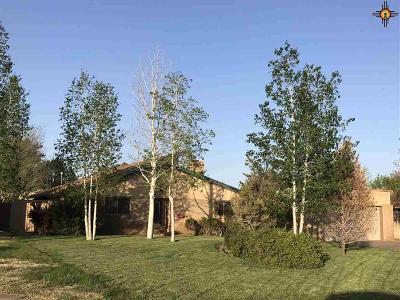 Clovis Single Family Home For Sale: 1711 Fairway Terrace