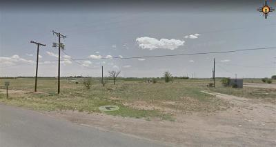 Portales Residential Lots & Land For Sale: 1697 S Roosevelt Rd 6