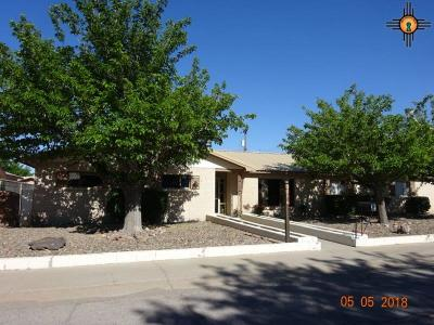 Deming Single Family Home For Sale: 1417 S Las Cruces Streeet