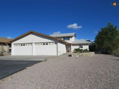 Sierra County Single Family Home For Sale: 207 Lakeshore Dr