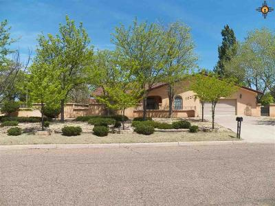 Clovis NM Single Family Home For Sale: $267,000