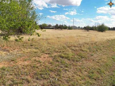 Clovis NM Residential Lots & Land For Sale: $8,500