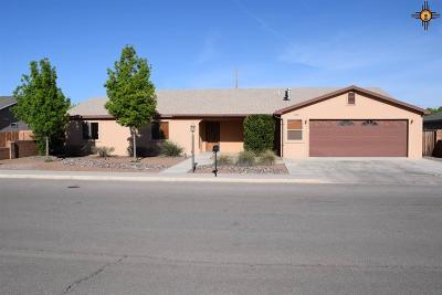 Deming Single Family Home For Sale: 2117 S Bryant Drive