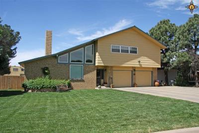 Clovis Single Family Home For Sale: 1001 Fairway Terrace
