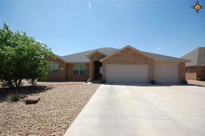 Clovis NM Single Family Home For Sale: $284,900