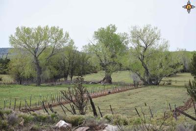 Residential Lots & Land For Sale: 16.87+/-ac Dilia Loop