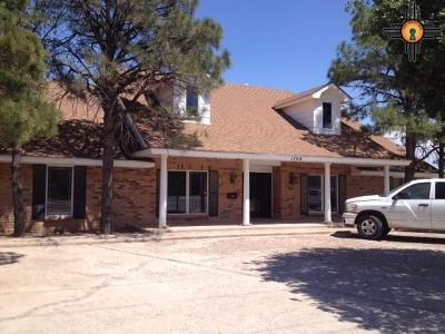 Commercial For Sale: 1706 N Dal Paso