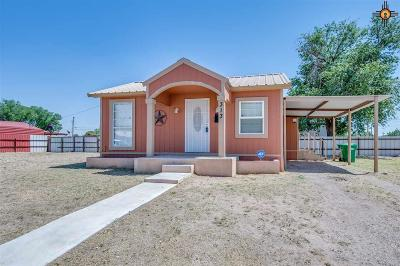 Hobbs Single Family Home For Sale: 313 W Clinton