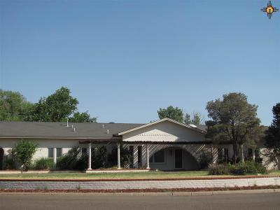 Clovis NM Single Family Home For Sale: $285,000