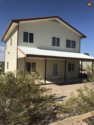 Sierra County Single Family Home For Sale: 513 Ontario