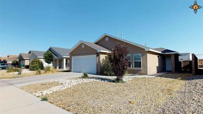 Hobbs Single Family Home For Sale: 4805 W Big Red Rd