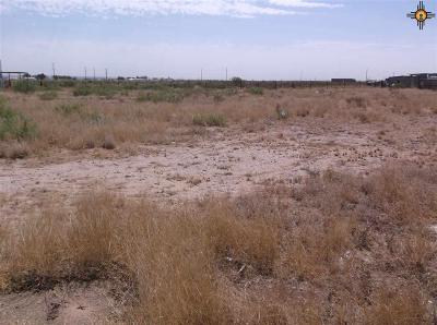Residential Lots & Land For Sale: 7026 Peyote Road