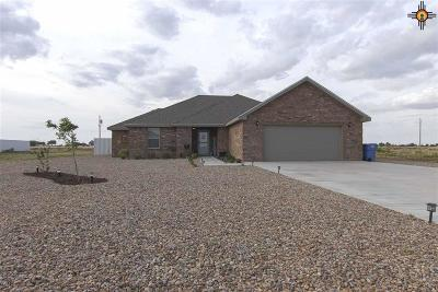 Portales NM Single Family Home For Sale: $219,000