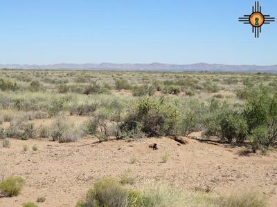 Residential Lots & Land For Sale: Eastside Addition
