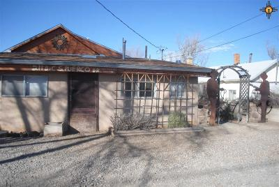 Gallup Single Family Home For Sale: 211 S Puerco
