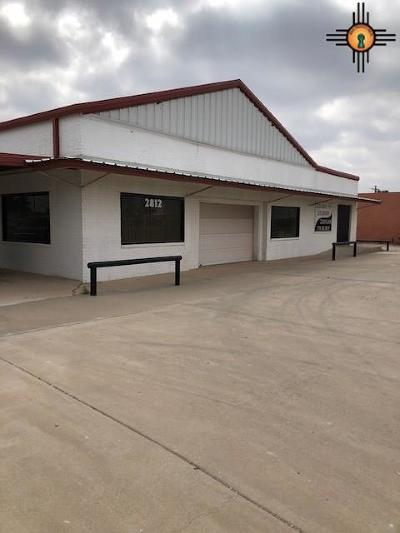 Commercial For Sale: 2812 N Lovington Highway