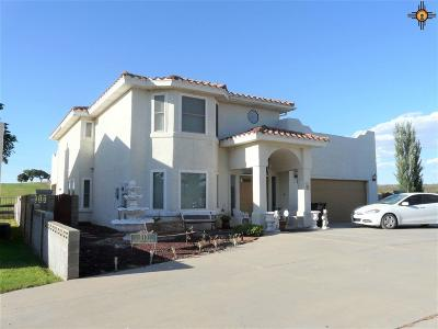 Carlsbad Single Family Home For Sale: 810 Firestone