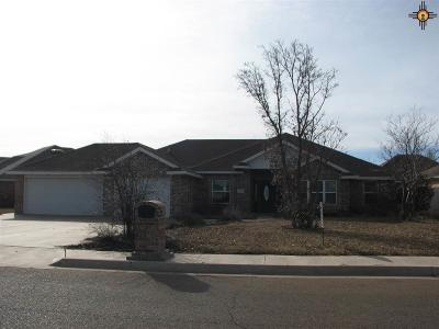 Clovis NM Single Family Home For Sale: $269,900