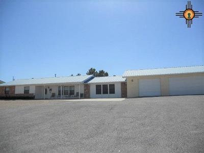 Sierra County Single Family Home For Sale: 405 Hawthorne Dr.
