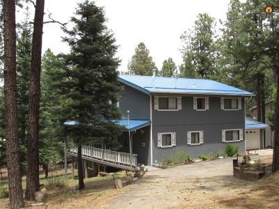 Rociada NM Single Family Home For Sale: $210,000