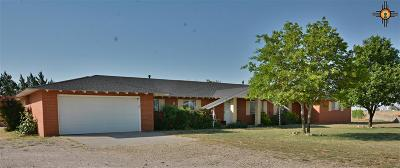 Portales Single Family Home For Sale: 153 Nm 267