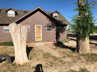 Portales Single Family Home For Sale: 2017 S Ave B