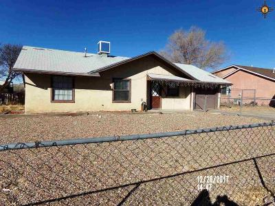 Gallup Single Family Home For Sale: 3418 Box Canyon