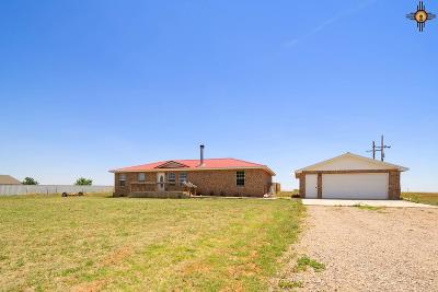Clovis NM Single Family Home For Sale: $194,900