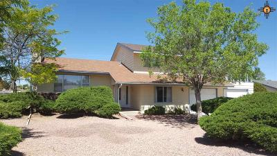 Single Family Home For Sale: 1308 Country Club Pl.