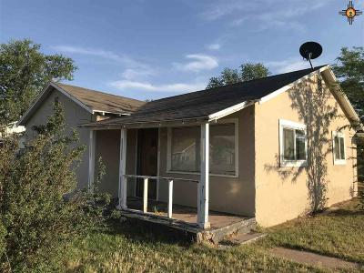 Roosevelt County Single Family Home For Sale: 900 S Ave A