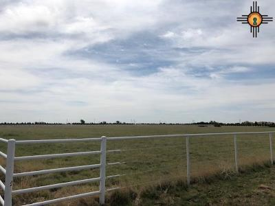 Clovis NM Residential Lots & Land For Sale: $80,000