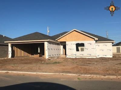 Portales Single Family Home Under Contract-Don't Show: 2108 Roadrunner