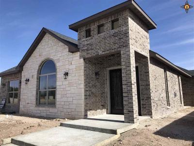 Hobbs NM Single Family Home For Sale: $349,000
