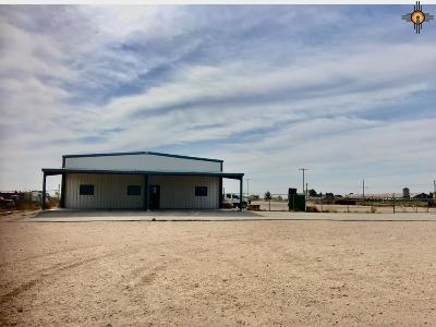 Commercial For Sale: 6918 S Eunice Highway